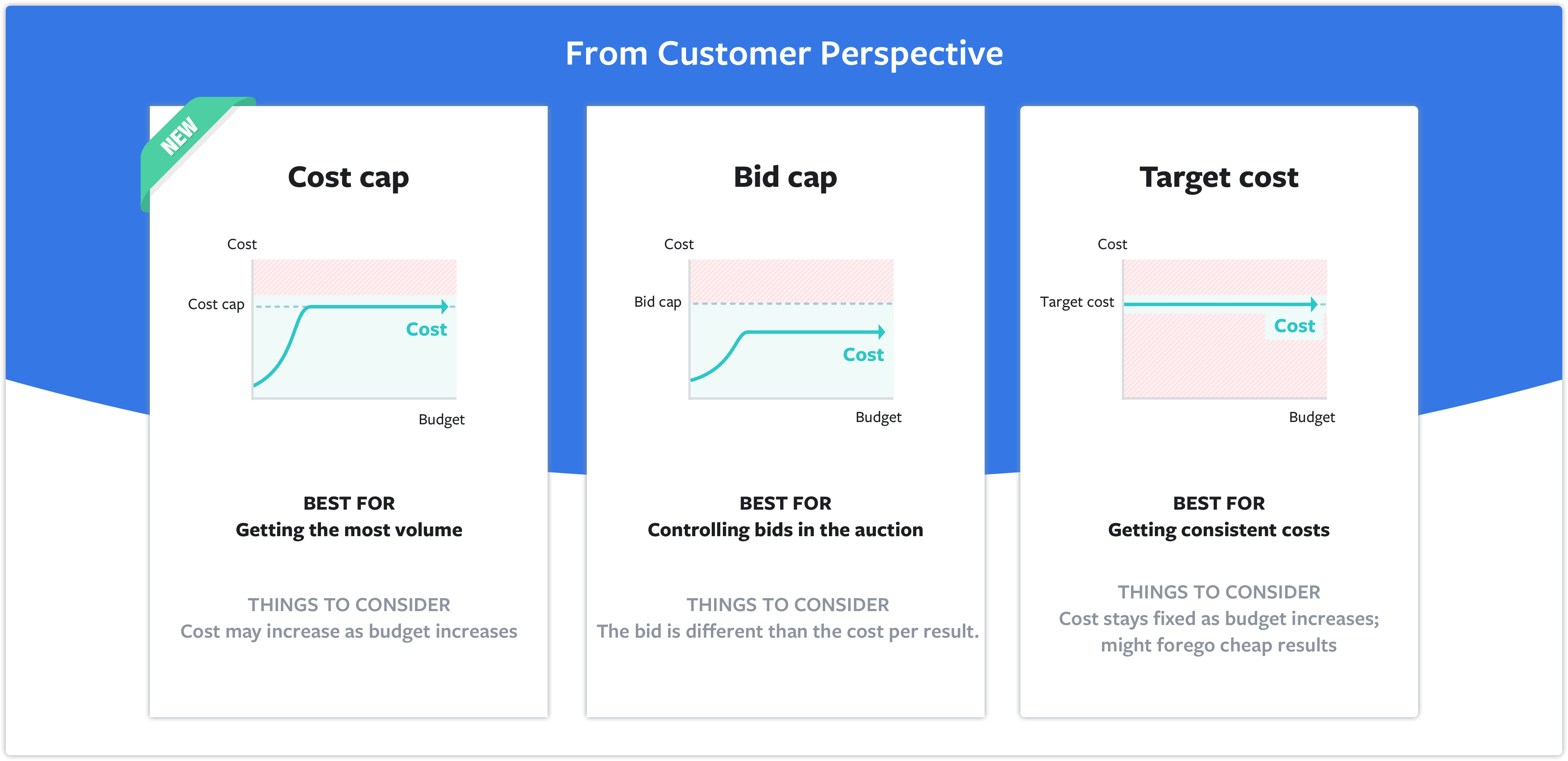 Bid Strategies visualized by Facebook